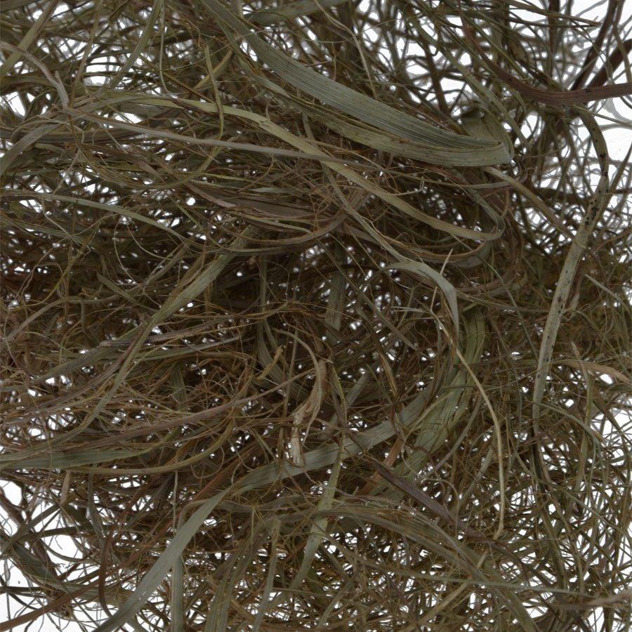 Crin / Seagrass